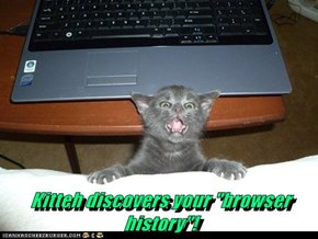 "Kitteh discovers your ""browser history""!"