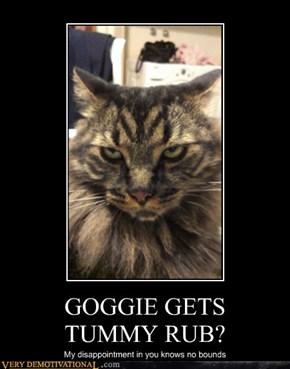 GOGGIE GETS  TUMMY RUB?