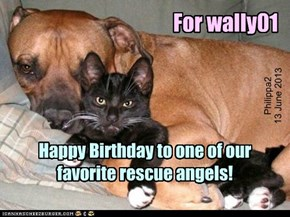 Happy Birthday to wally01!