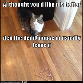 Ai thought you'd like dis better den the dead mouse ai usually leave u