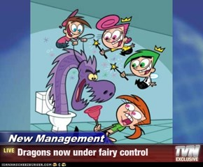 New Management - Dragons now under fairy control