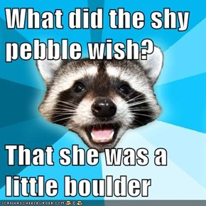 What did the shy pebble wish?  That she was a little boulder