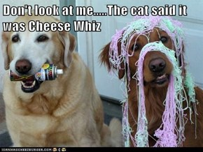 Don't look at me.....The cat said it was Cheese Whiz