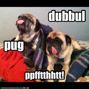 dubbul pug ppfftthhtt