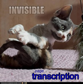 invisible transcription