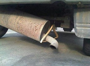 Hang in There, Muffler