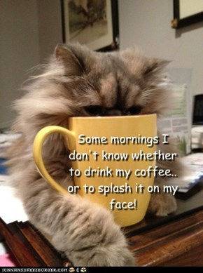 Some mornings I don't know whether to drink my coffee.. or to splash it on my face!