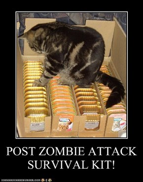 POST ZOMBIE ATTACK SURVIVAL KIT!