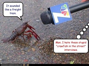 "Man, I hate these stupid ""crawfish in the street"" interviews."