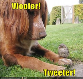 Woofer!                           Tweeter!