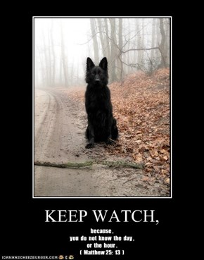 KEEP WATCH,