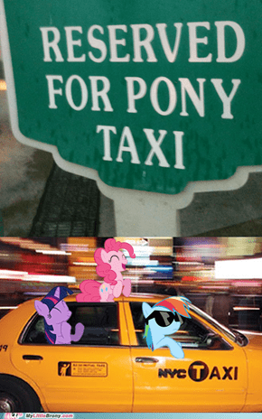 Reserved for Pony Taxi