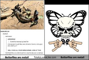 Butterflies are metal! Totally Looks Like Butterflies are metal!