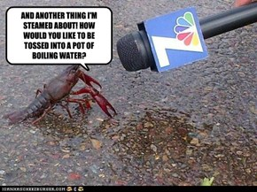 "LOBSTERS SAY, "" THEIR MAD AS HELL, AND THEIR NOT GONNA TAKE IT ANY LONGER!"""