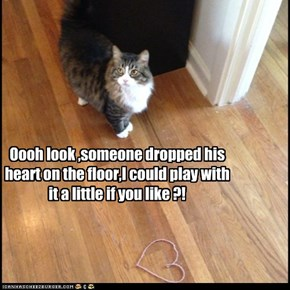 Oooh look ,someone dropped his heart on the floor,I could play with it a little if you like ?!