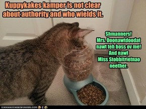 Kuppykakes kamper is not clear about authority and who wields it.
