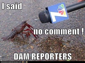 I said no comment ! DAM REPORTERS