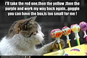 I'll take the red one,then the yellow ,then the purple and work my way back again...goggie you can have the box,is too small for me !