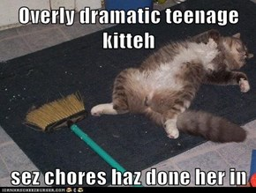 Overly dramatic teenage kitteh  sez chores haz done her in