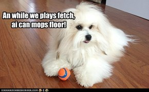 An while we plays fetch, ai can mops floor!