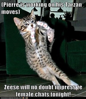 (Pierre is working on his Tarzan moves)  Zeese will no doubt impress ze female chats tonight!