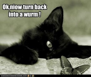 Ok,niow turn back into a wurm !