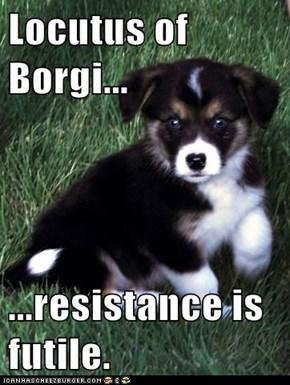 Locutus of Borgi...  ...resistance is futile.