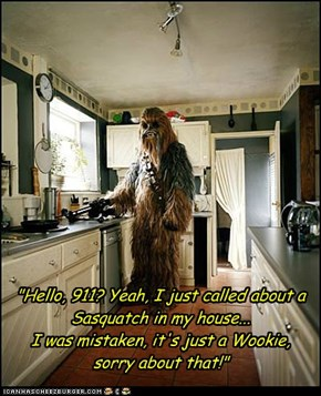 """Hello, 911? Yeah, I just called about a Sasquatch in my house...  I was mistaken, it's just a Wookie, sorry about that!"""