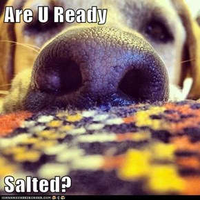 Are U Ready  Salted?