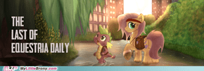 My Little Pony The Last of Us