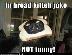 In bread kitteh joke     NOT funny!