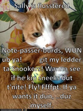 Sally is flusstered  Note-passer-burds, WUN ub ya!          git my ledder ta Snookers! Wanna see if he kin sneeks out t'nite! Fly! Ffffpt. If ya wants it dun, ..duz myself.