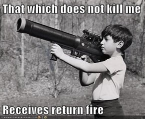 That which does not kill me  Receives return fire