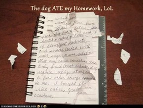The dog ATE my Homework, LoL