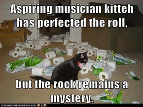 Aspiring musician kitteh has perfected the roll,  but the rock remains a mystery.
