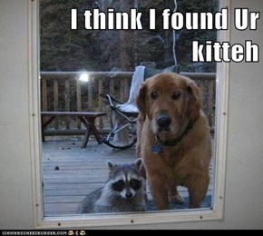 I think I found Ur kitteh