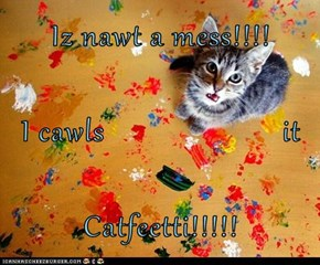 Iz nawt a mess!!!! I cawls                       it Catfeetti!!!!!