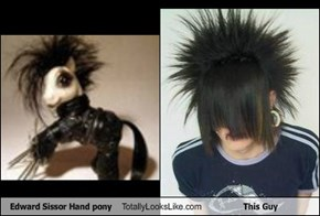 Edward Sissor Hand pony Totally Looks Like This Guy