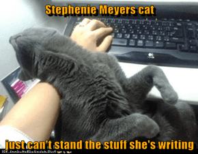 Stephenie Meyers cat  just can't stand the stuff she's writing