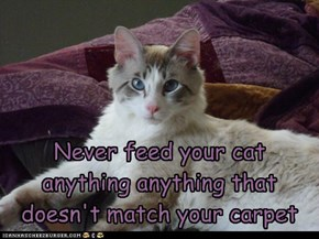 Never feed your cat anything anything that doesn't match your carpet