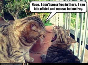 Nope.  I don't see a frog in there.  I see bits of bird and mouse, but no frog.