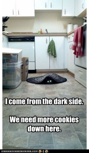 I come from the dark side.  We need more cookies down here.