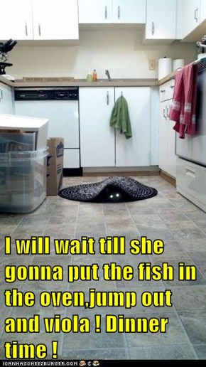 I will wait till she gonna put the fish in the oven,jump out and viola ! Dinner time !