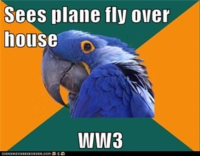 Sees plane fly over house  WW3
