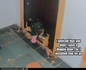 I noticed that you didn't have a doggie door...So I installed one for ya
