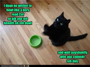 A Kitteh Dilemma...For 2 Sekints May Bee