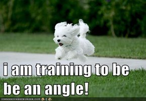 i am training to be be an angle!