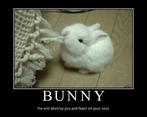 Beware the Cute Bunnies