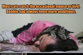Most cats catch the occasional mouse or bird. Bobbie had always been more ambitious.