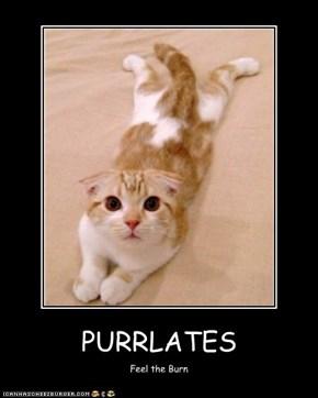 PURRLATES